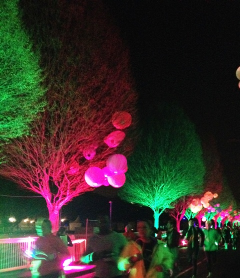 Electric Run Race Course - Trees