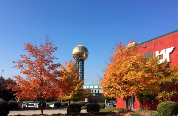 Fall in Knoxville - Sunsphere